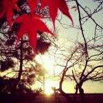 長浜の夕陽