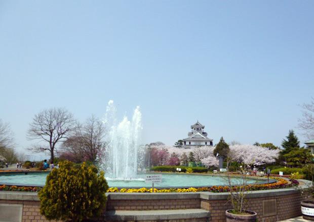 豊公園の桜と長浜城