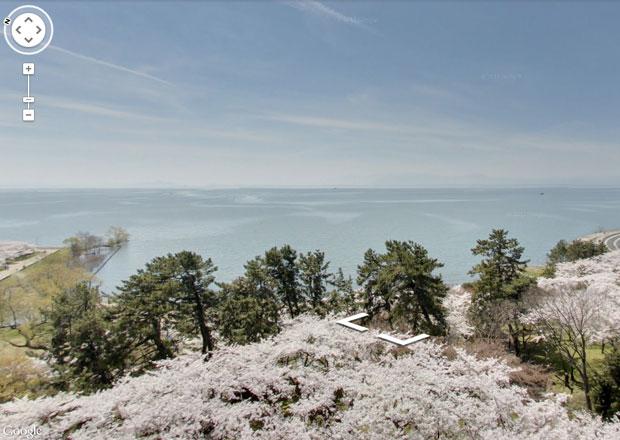 Googleストリートビューで琵琶湖と豊公園の桜