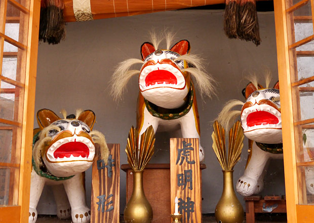 虎姫が虎だらけなのにはワケがある。7つの虎で見えたこと
