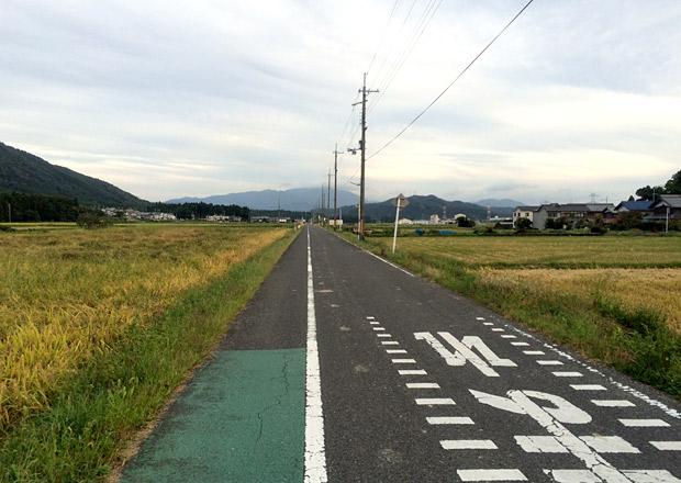 田んぼ道をひたすら走ります