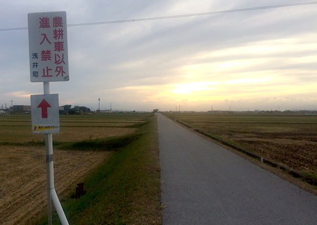 ひたすら続く田んぼ道のコース