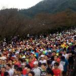 全国から5,555名が参加したあざいお市マラソンを走りました。
