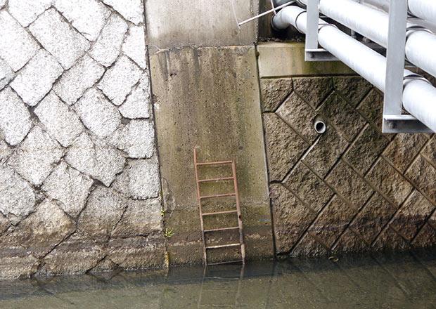 川の中から梯子