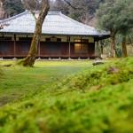 5/17(日)近江孤篷庵のお庭で、音楽が楽しめるイベントが開催!
