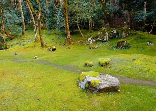 近江孤篷庵の枯山水庭園