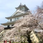 長浜城と桜の風景は美しい