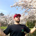 みなさん豊公園の桜が満開ですよ。お花見しましょう