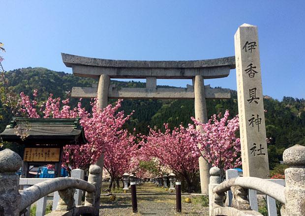 伊香具神社の参道