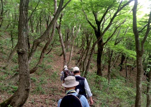 オトチの岩窟を目指し山道を歩く