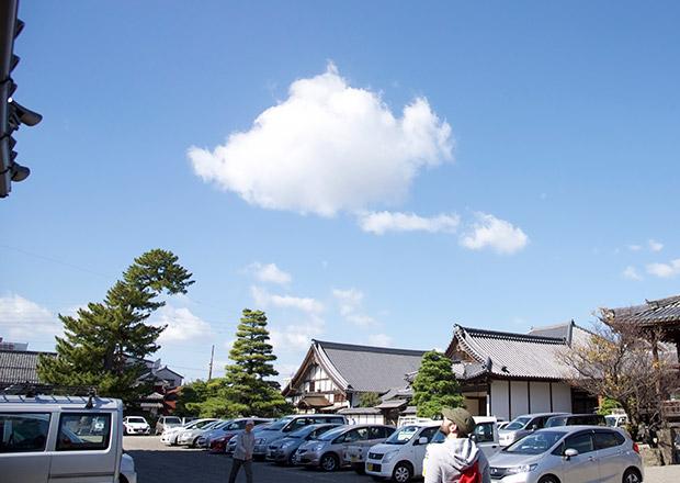 大通寺の境内にゴジラ