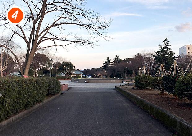 豊公園の噴水を通過する