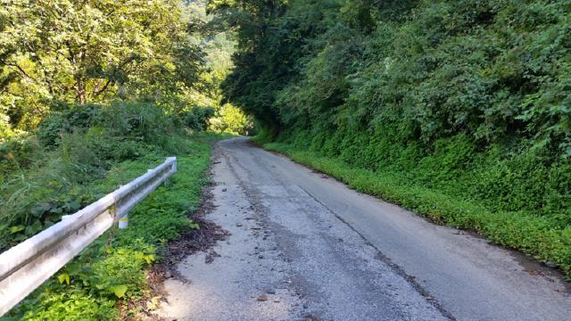 鳥越峠をドライブします。