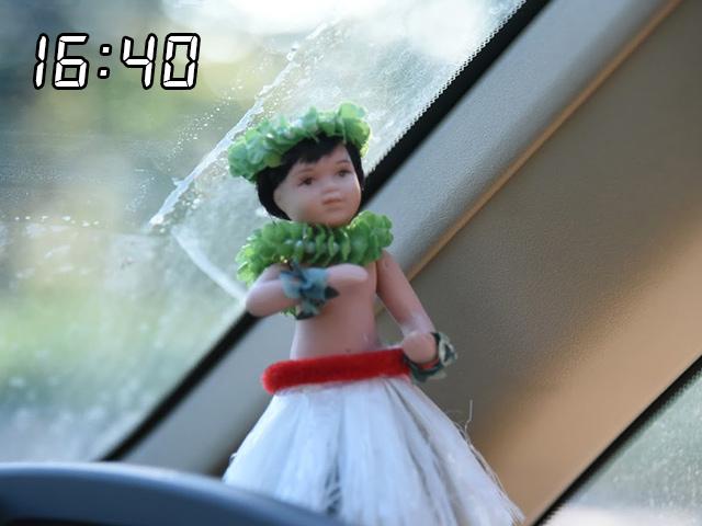 長浜の妹こと浅井千穂に似たフラドールハワイ土産のフラドールやたらリアルなやつ