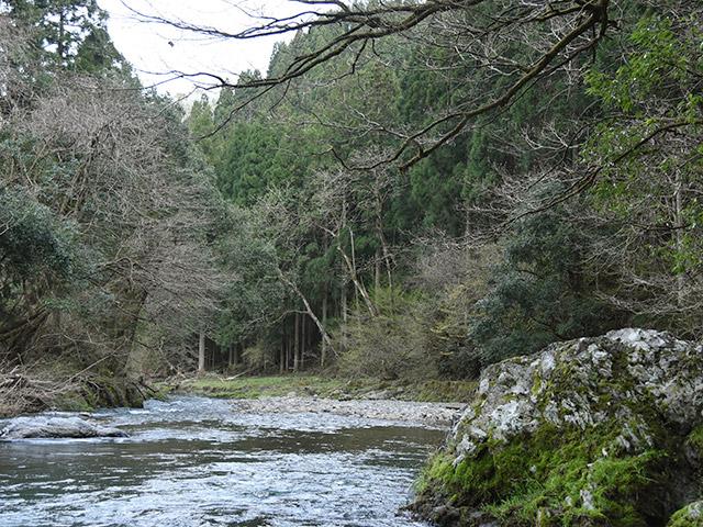 木之本の杉野川まで釣りにやってきた