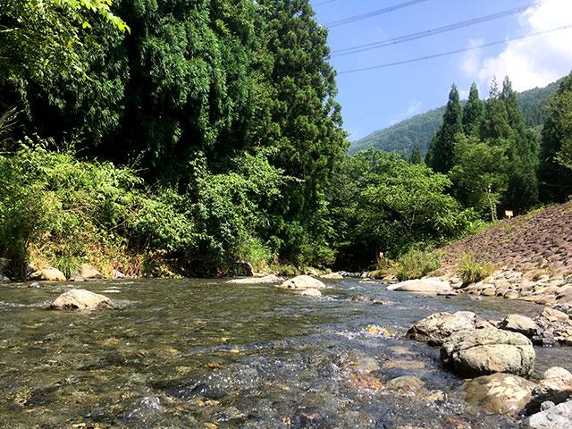 高山キャンブ場のとなりに流れる草野川で川遊び