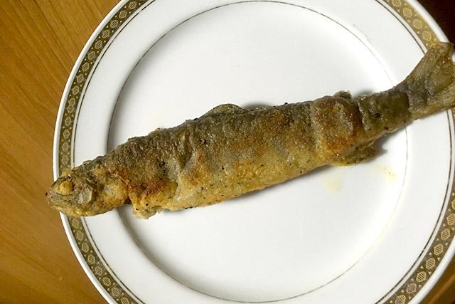 釣ったイワナは天ぷらにして食べた