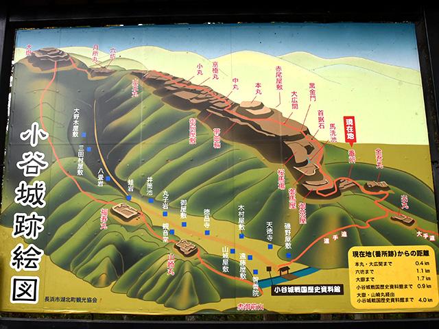 小谷城の絵図