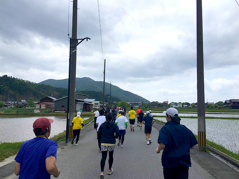 一斉にスタート!田んぼ道を琵琶湖に向かって走ります。